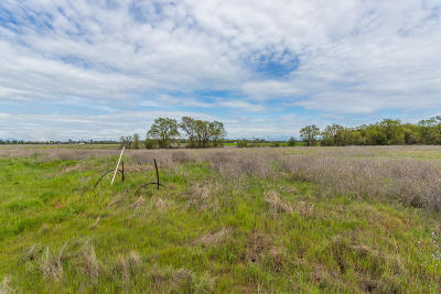 Anderson Residential Lots & Land For Sale: Lot 4 Scenic Oak Ct