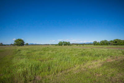 Anderson Residential Lots & Land For Sale: Lot 10 Scenic Oak Ct.