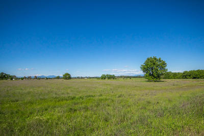 Anderson Residential Lots & Land For Sale: Lot 11 Scenic Oak Ct.