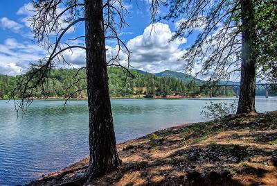 Lakehead Single Family Home For Sale: Cabin 9 Lower Salt Creek Rd.