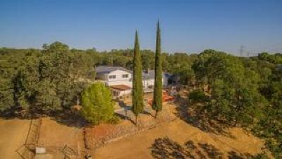 Red Bluff Single Family Home For Sale: 14470 Green Drive