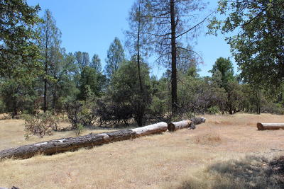 Redding Residential Lots & Land For Sale: 1510 Lake Blvd