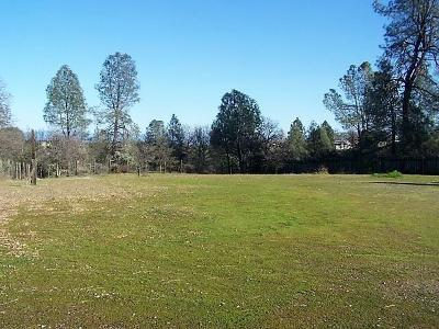 Redding Residential Lots & Land For Sale: 495 Wright Dr