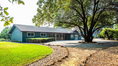Palo Cedro Single Family Home For Sale: 10732 Deschutes Rd