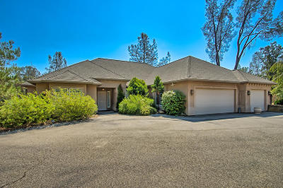 Redding Single Family Home For Sale: 16731 Texas Springs Rd