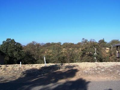 Residential Lots & Land For Sale: 19637 Valley Ford Dr