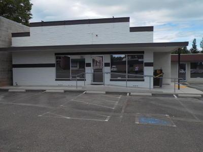Shasta Lake Commercial For Sale: 4229-4231 Shasta Dam Blvd