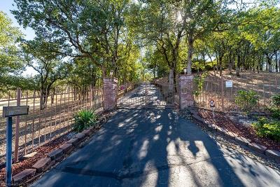 Palo Cedro Single Family Home For Sale: 21787 Charolais