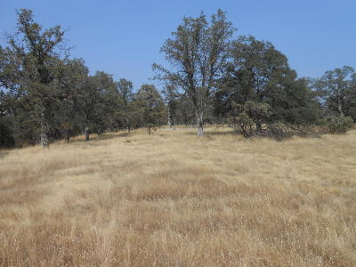 Palo Cedro Residential Lots & Land For Sale: Woodview Drive
