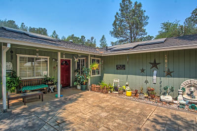 Redding Single Family Home For Sale: 14008 Bear Mountain Rd