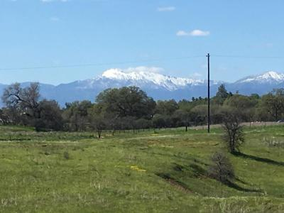 Cottonwood Residential Lots & Land For Sale: 10 acres View Acres