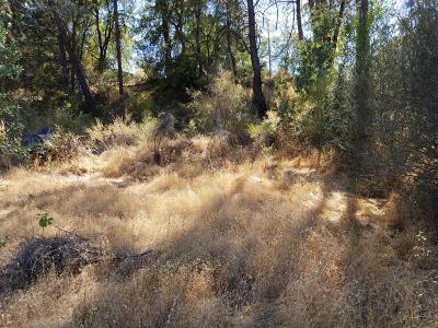 Residential Lots & Land For Sale: Shasta Dam Blvd.