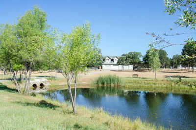 Red Bluff Single Family Home For Sale: 15401 Diamond Star Road