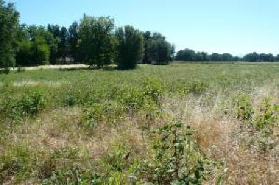 Anderson Residential Lots & Land For Sale: Rupert 3.33 Acres