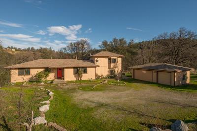 Redding Single Family Home For Sale: 21293 Jennifer Dr
