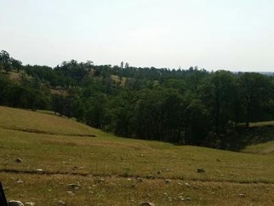 Red Bluff Residential Lots & Land For Sale: 295.85 Hwy 36w
