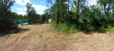 Redding Residential Lots & Land For Sale: Squaw Grass Trl