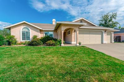 Redding Single Family Home For Sale: 2998 Howard Dr