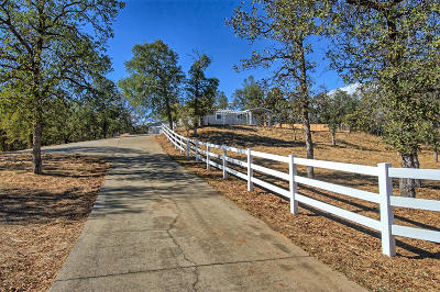 Redding Single Family Home For Sale: 12616 Los Osos Street