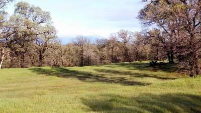 Residential Lots & Land For Sale: 18875 Blythe Way