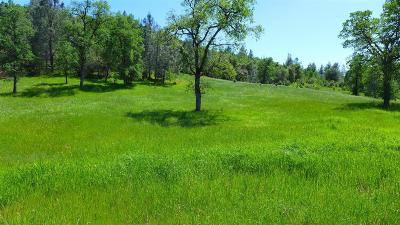 Residential Lots & Land For Sale: Bear Mountain Road