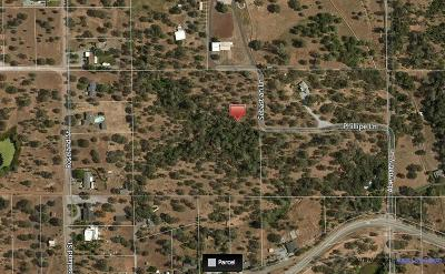 Single Family Home For Sale: 2990 Old Alturas Rd