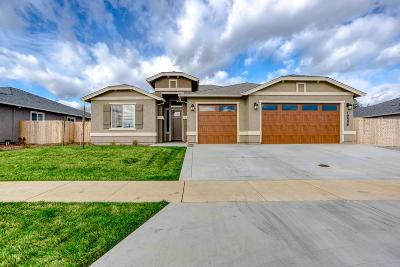 Redding Single Family Home For Sale: 19556 Carnegie Dr