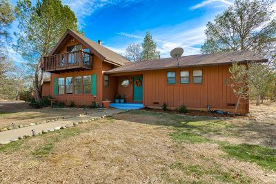 Redding Single Family Home For Sale: 21009 Hackett Ln