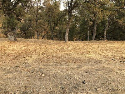 Cottonwood Residential Lots & Land For Sale: 19602 Stoneyford Place