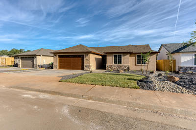 Single Family Home For Sale: 20244 Ballentine Dr #Lot 28