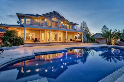 Single Family Home For Sale: 16211 Purple Elm Dr