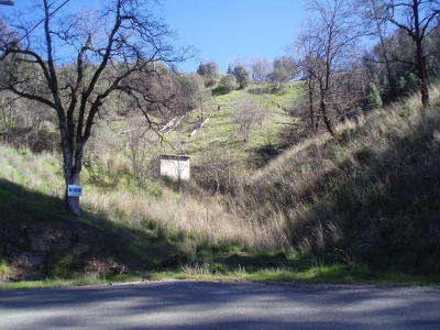Redding Residential Lots & Land For Sale: Lookout Ct