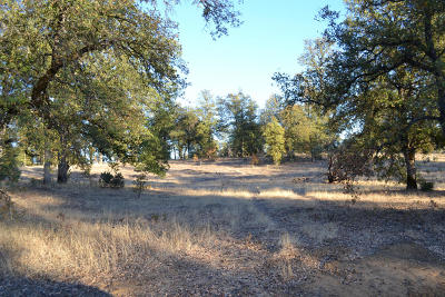 Redding Residential Lots & Land For Sale: Decoy Drive