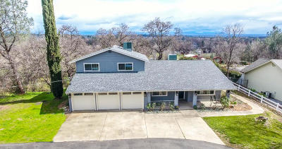 Palo Cedro Single Family Home For Sale: 9893 Hillview Dr