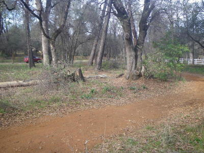 Shasta Lake Residential Lots & Land For Sale: Black Canyon Rd