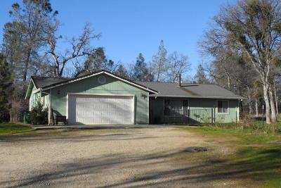 Shingletown Single Family Home For Sale: 27178 Dersch Rd