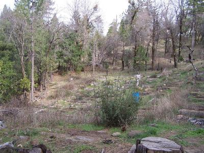 Whitmore Residential Lots & Land For Sale: Mill Creek Road