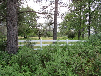 Residential Lots & Land For Sale: Lot 8 Black Butte Rd.