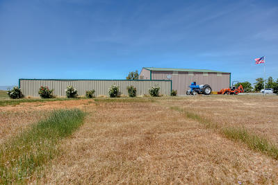 Corning Residential Lots & Land For Sale: 5955 Paskenta Rd