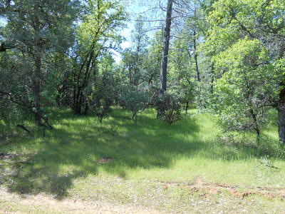 Residential Lots & Land For Sale: Chaparral Dr