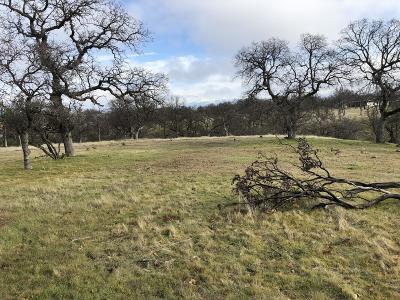 Residential Lots & Land For Sale: 22332 Redrock Peak Pl