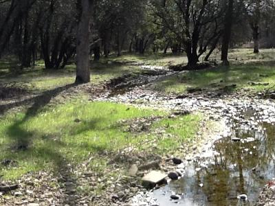 Cottonwood Residential Lots & Land For Sale: 14675 Singing Trees Ln