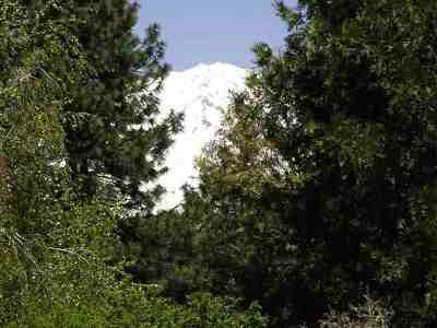 Mt Shasta Residential Lots & Land For Sale: Lot 10 Holiday Lane