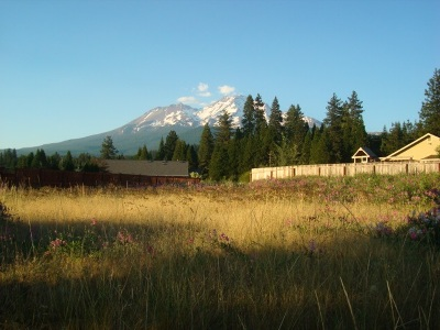 Mt Shasta Residential Lots & Land For Sale: Lot 15 Paul's Place