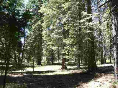 McCloud Residential Lots & Land Comp Only: 2-D-40 Snowline Circle