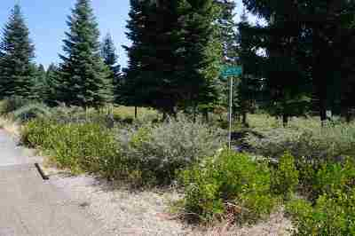 Mt Shasta Residential Lots & Land For Sale: Parcels 1-4 Mt. Shasta Place