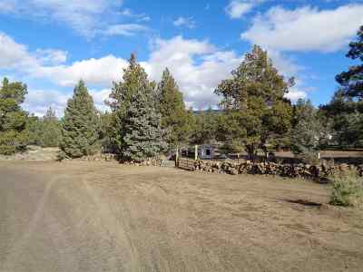 Residential Lots & Land For Sale: Blk 66 Lot 6 Martin Dr Mt Shasta Vista Sub