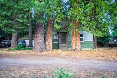 Single Family Home For Sale: 1206 Scenic
