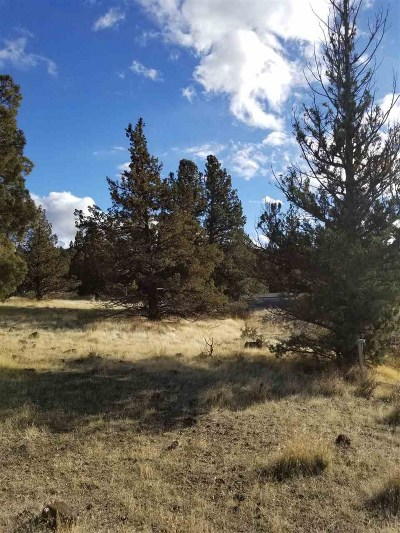 Residential Lots & Land For Sale: Lot 127 Antler Way