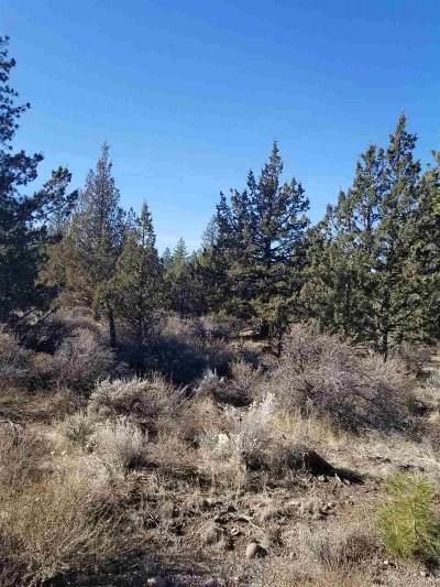 Residential Lots & Land For Sale: Unit 2 Lot 540 Horseshoe Trail